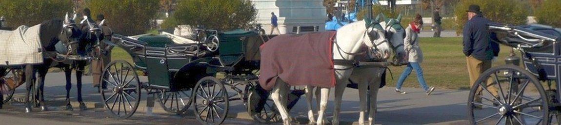 Lenk- und Ruhezeiten für Reisebusfahrer